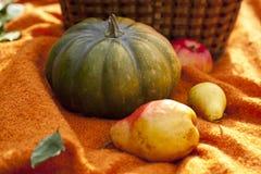 Großer Kürbis, Äpfel und Birnen Lizenzfreie Stockfotos