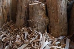 Großer Klotz der Bereich um das Holz und den Staub Stockbilder