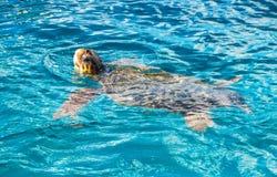 Großer Meeresschildkröte Caretta spoted nahe Zakynthos-Insel, Griechenland lizenzfreie stockbilder