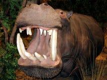 Großer Mund Hippopotumus   lizenzfreie stockfotografie