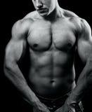 Großer muskulöser reizvoller Mann mit leistungsfähiger Karosserie Stockfoto