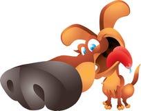 Großer Nasenhund Lizenzfreie Stockfotografie