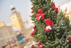 Großer natürlicher Weihnachtsbaum im Freien mit roten Bögen Stockfotografie