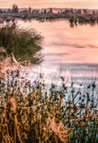 Großer nebelhafter Sonnenuntergang über Sumpf Stockbild