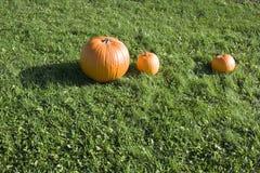 Großer orange Kürbis mit zwei kleineren Kürbisen Stockbild