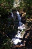 Großer rauchige Gebirgsnationalpark Lizenzfreies Stockbild