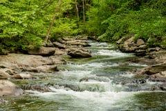 Großer rauchiger Gebirgsnationalpark Lizenzfreies Stockfoto