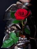 Großer Ritter, der schöne Blume betrachtet stockbilder