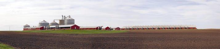 Großer roter Bauernhof Stockfoto