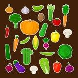 Großer Satz buntes Gemüse mit weißem Anschlag lizenzfreie abbildung