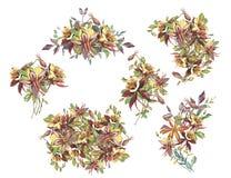 Großer Satzsommer-Blumenrahmen in einer Aquarellart lokalisiert Stockfotografie