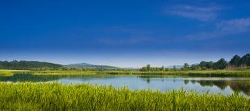 Großer See mitten in Wiesen Stockfotos