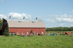 Großer Stall in der Landschaft Stockfoto
