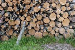 großer Stapel des Feuerholzes in der Landschaft Stockfotografie