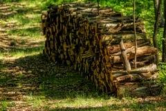 Großer Stapel des Holzes Stockfoto