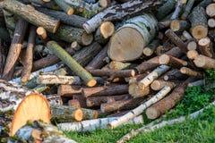 großer Stapel von frischen Feuerholzklotz Stockbild