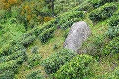 Großer Stein über einem grünen Hügel lizenzfreie stockfotografie
