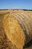 Großer Strohheuschober in der landwirtschaftlichen Landschaft Stockfotos