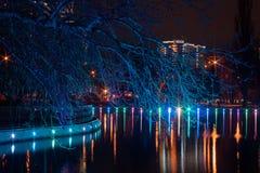 Großer Teich im Park mit Lichtern Lizenzfreie Stockfotografie