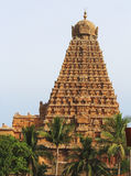 Großer Tempel Tanjavur Lizenzfreie Stockfotografie