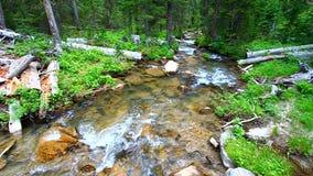 Großer Tipi-Nebenfluss in Wyoming