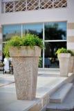 Großer Vase Stockfotos