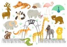 Großer Vektor-Satz der Illustration des Tieres Nette Tiere des Zoos Stockbilder
