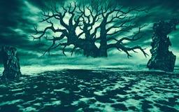 Großer verwelkter Baum in einer Reinigung mit Ruinen Stockbilder