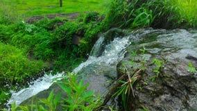 Großer Wasserfall in Indien Stockbilder