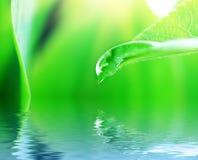 Großer Wassertropfen Lizenzfreie Stockfotografie