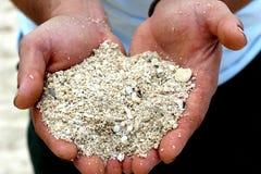 Großer weißer Sand von den Oberteilpartikeln von einem philippinischen Strand in Moalboal, Cebu stockfotos