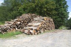 Großer Woodpile auf Gras Lizenzfreie Stockfotografie