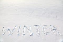 Großer Wortwinter auf Schneefeld Stockbild