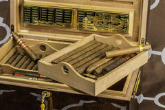 Großer Zigarren-Luftfeuchtigkeitsregler 4 Stockfotos