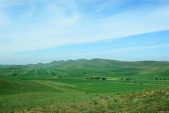 Großes Ackerland Stockfotos