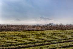 Großes Ararat, Kloster Khor Virap Lizenzfreie Stockfotos