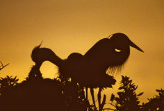 Großes Blau-Reiher auf Nest am Sonnenuntergang Lizenzfreies Stockbild