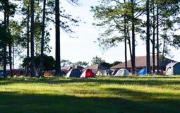 Großes blaues Zelt in einer Mitte des Waldes lizenzfreies stockfoto