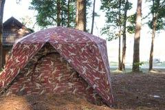 Großes blaues Zelt in einer Mitte des Waldes Stockfotos