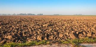 Vor kurzem vorbereitetes Ackerland im goldenen Morgensonnenlicht Stockfoto
