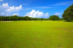 Großes Golffeld Stockbilder