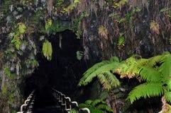 Großes Insel Thurston Lava-Gefäß Stockfoto