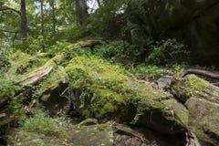 Großes Moos bedeckte Steine und gefallenen Baum lizenzfreies stockbild