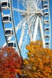 Großes Rad von Montreal während der Herbstsaison lizenzfreie stockbilder