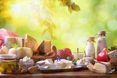 Großes Sortiment von handwerklichen Milchprodukten in der Natur lizenzfreie stockfotografie
