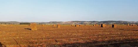 Großes Straw Cubes Lying In The-Feld nach der Ernte, die lang schafft Lizenzfreies Stockbild