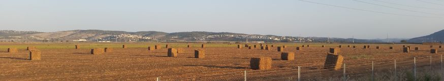 Großes Straw Cubes Lying In The-Feld nach der Ernte, die lang schafft Lizenzfreie Stockfotografie