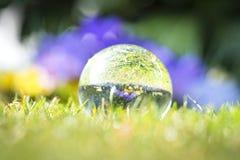 Großes Tröpfchen auf grünem Gras mit einer Reflexion lizenzfreie stockfotos