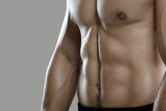 Großes Training Porträt des muskulösen Berufsbodybuilders und Stockfotografie