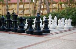 Großes tropisches Schachbrett Stockbild